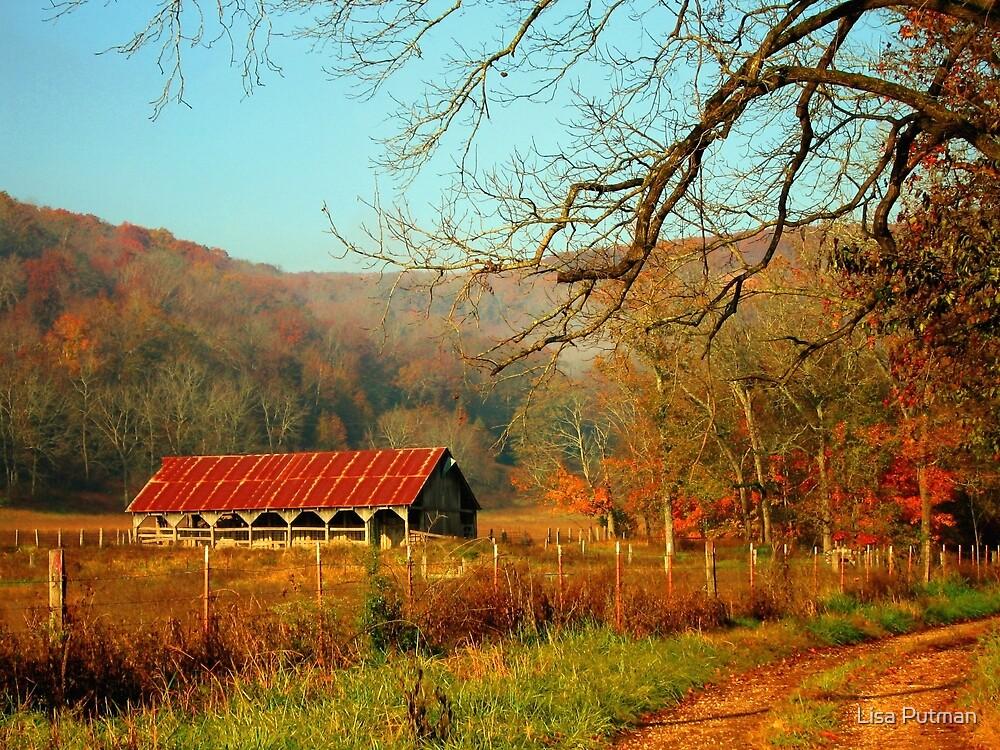 November Morning by Lisa Putman
