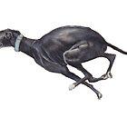 Black Running Greyhound by Charlotte Yealey