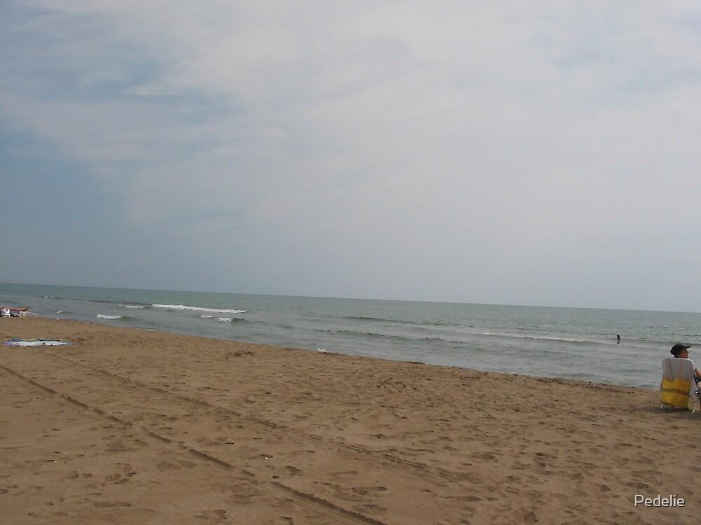 Playa eucalypta by Pedelie