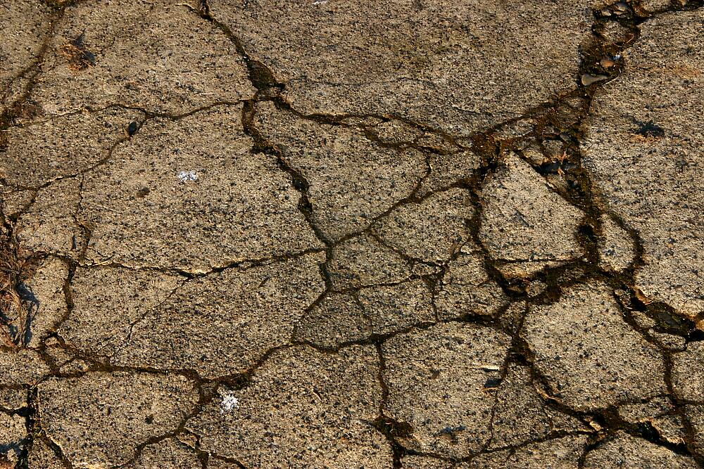 Cracked Mud by RolandTumble