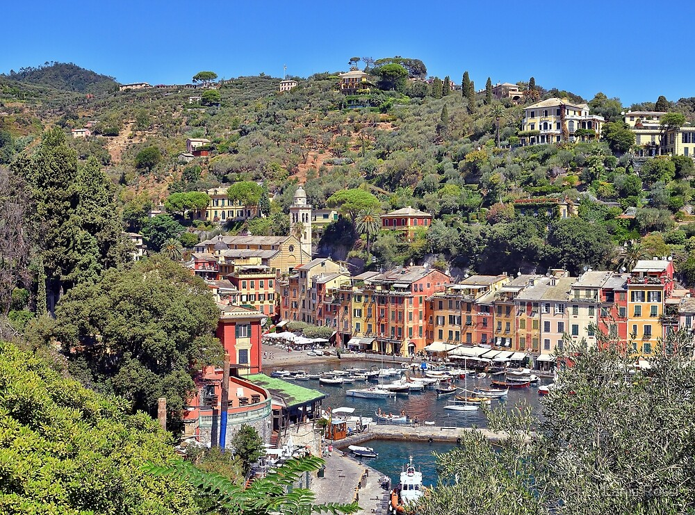 A Little Town Called Portofino by Lanis Rossi