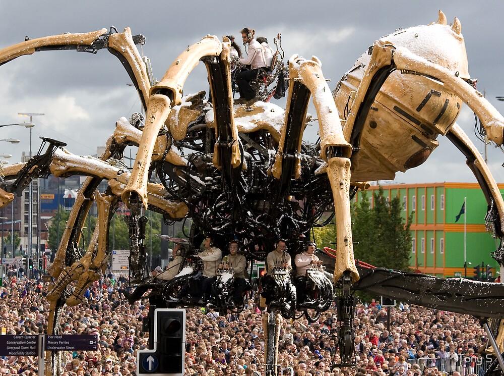 La Machine - Liverpool 2008 by Tony S