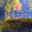 Morning Side, White River by NatureGreeting Cards ©ccwri