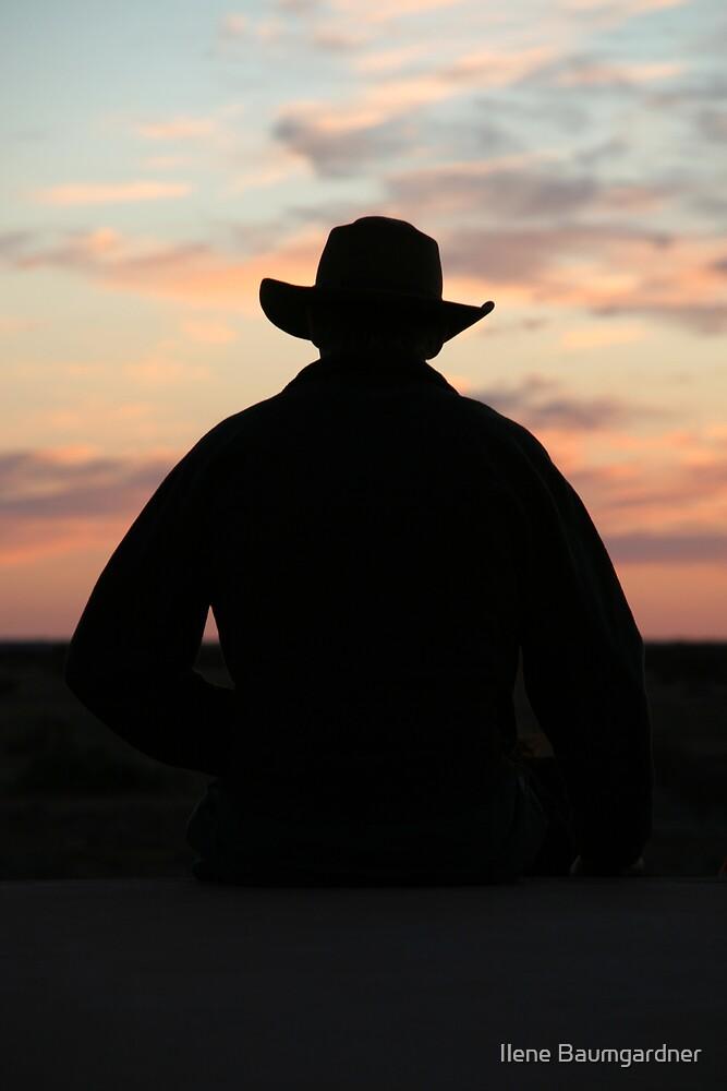 Sunset Cowboy by Ilene Baumgardner