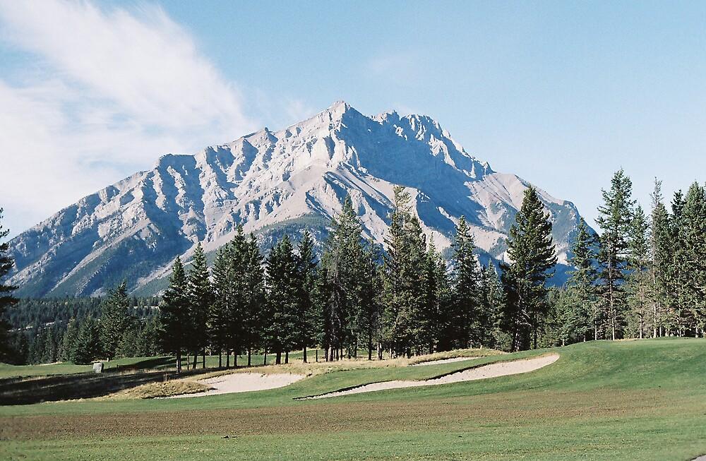 Golfers Paradise by Steve Mezardjian