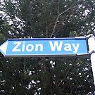Zion Way by Rangi Matthews