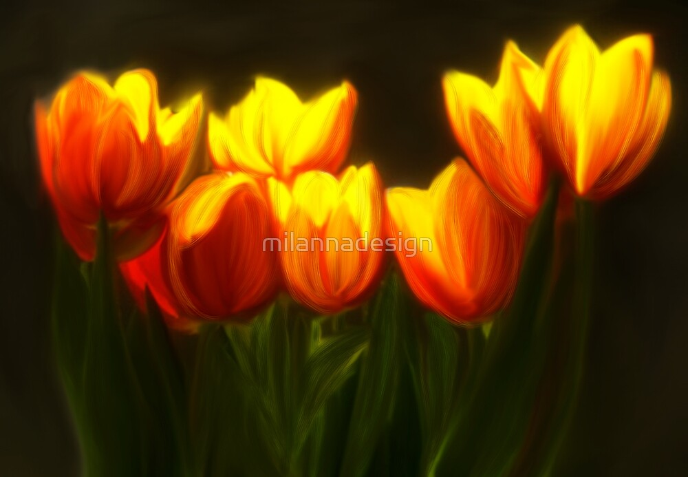 Glowing Tullips by milannadesign
