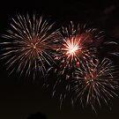 Fireworks by Hermien Pellissier