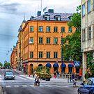 Drottninggatan Street Scene  by Barry W  King