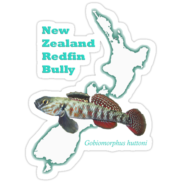 Native Redfin by taterbug