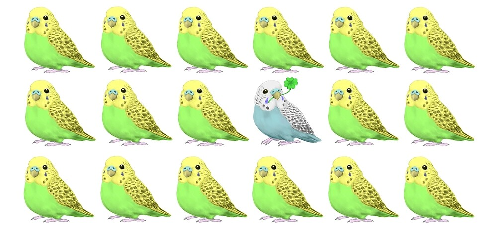 Lucky Parakeet Bird by tobiko