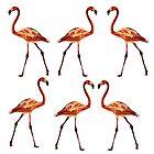 «Pink Flamingo Birds» de Manitarka