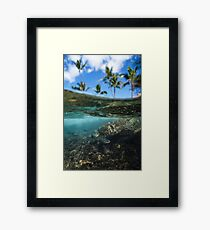 Turtle Island Under Water print Framed Print