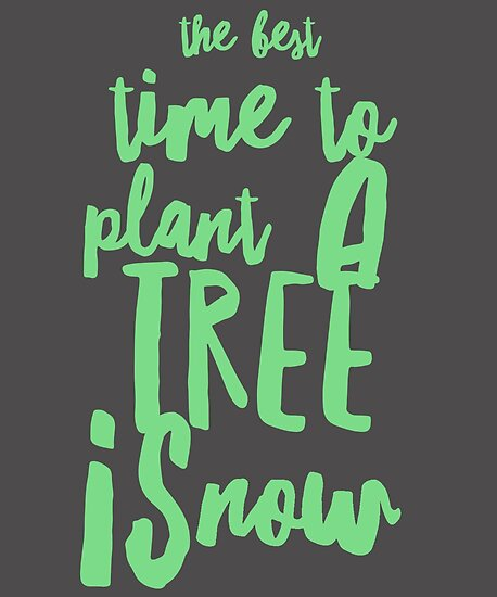 Plant A Tree Quote Posters By Bumblethebee Redbubble