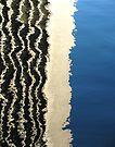 Water Reflection 4 by Jeannette Sheehy