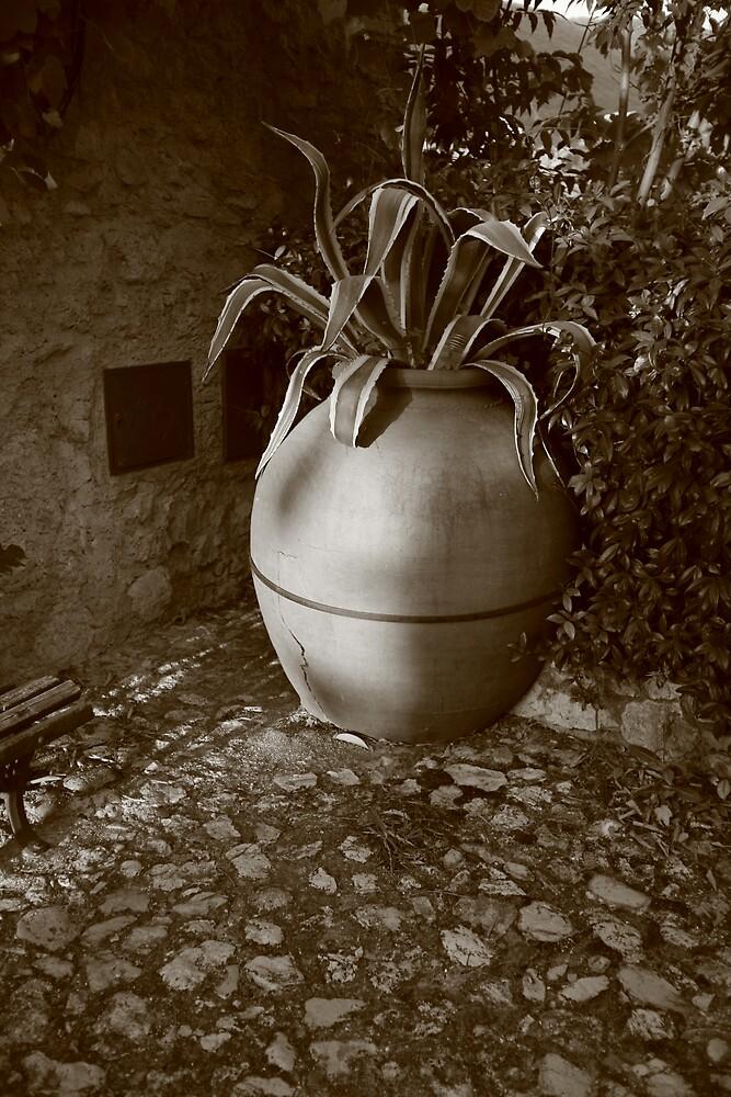 Pot by Jessica Lynn