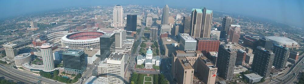 St. Louis, MO by Michael Gorham