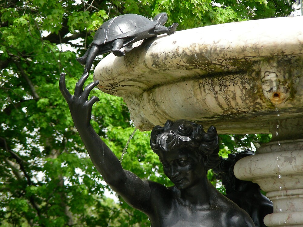 turtle fountain by Edith Graybill