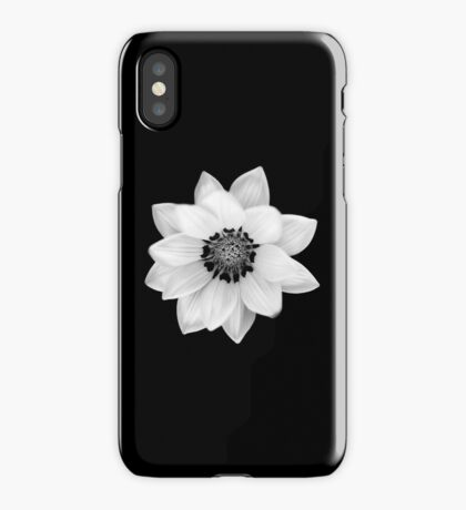 Black and White Gazania [Print and iPhone / iPad / iPod Case] iPhone Case/Skin