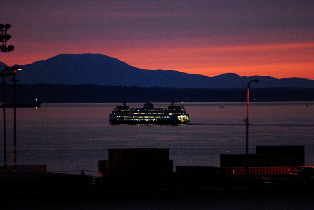 Ferry Lights by MsLiz