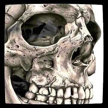 Skull Smiling Assassin  by PunkStickEmUp