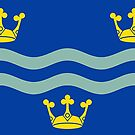 Cambridgeshire Flag Stickers by mpodger