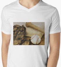 America's Pastime Men's V-Neck T-Shirt