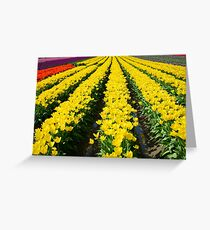 Rows of Beauty Greeting Card