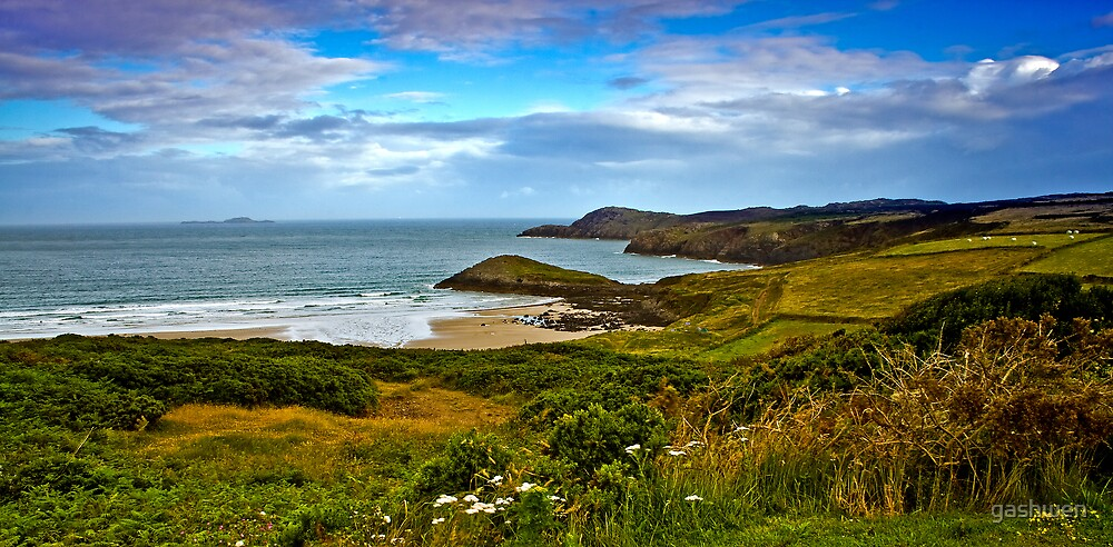St.Davids WHite Sand Beach by gashwen