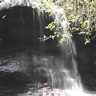 Cataract Falls, Lawson, Blue Mountains by Jodie Elchah