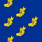 Sussex Flag Phone Cases by mpodger