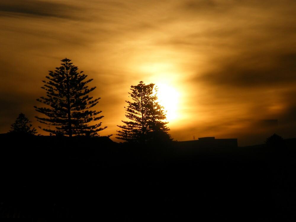 sun set by jamiie