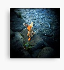 sail away with me little donkey Canvas Print
