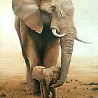 UMAMA by Lance Barnard