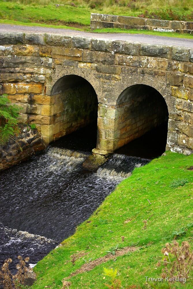 Ousegill Bridge - North York Moors by Trevor Kersley