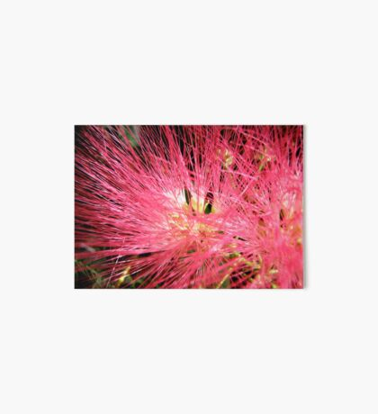 Pink Explosion Art Board