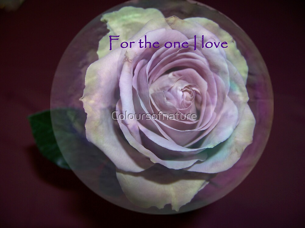 For the one I love  by Coloursofnature