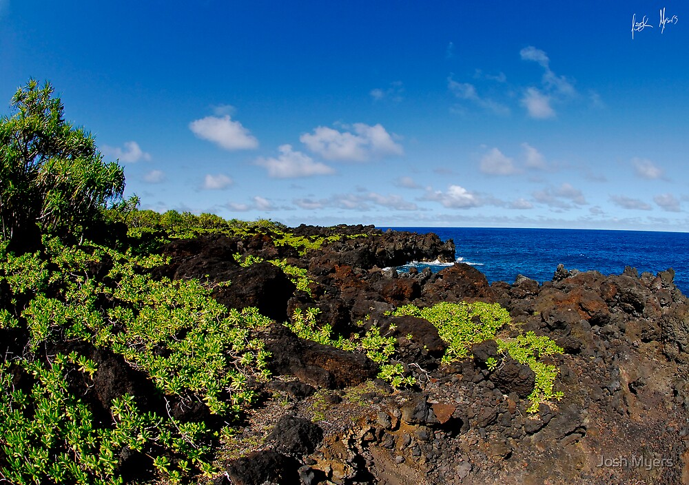 On the road to Hana by Josh Myers
