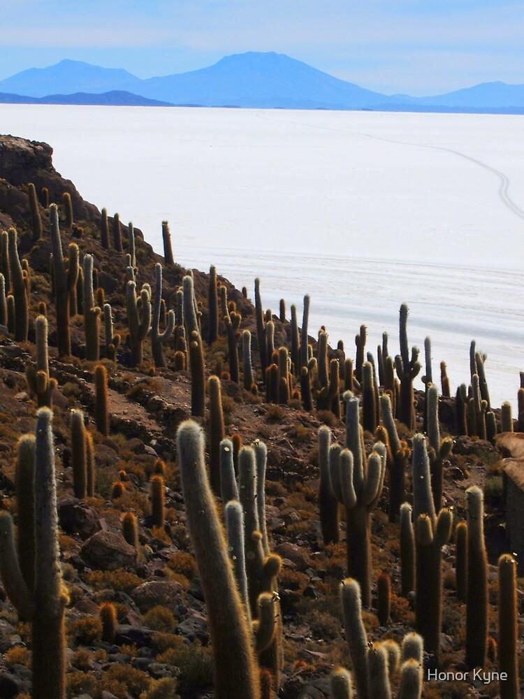 Giant Cacti, Salar Uyuni by Honor Kyne