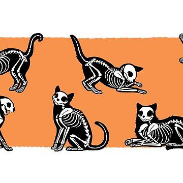 SkeleCats - Naranja de kaenith