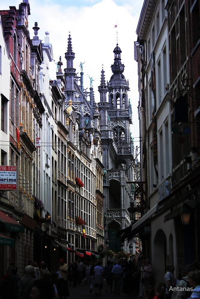 The Old street in Brussels (Belgium) by Antanas