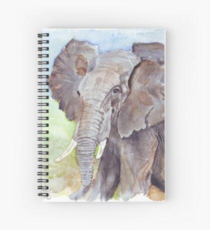 Africa's Wonder Spiral Notebook