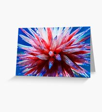 Chihuly 3 Greeting Card