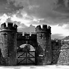 CASTLE GATE by AndyReeve