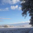 Winter in Norg  by Peter Voerman