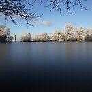 Frozen lake  by Peter Voerman