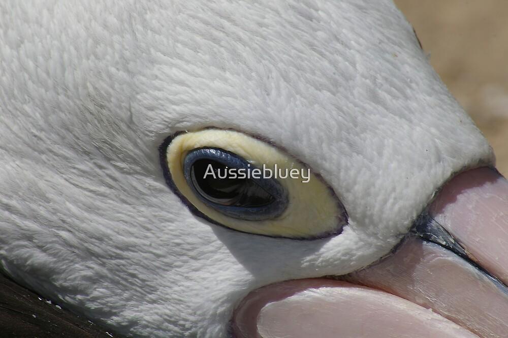 Eye of the Pelican. by Aussiebluey