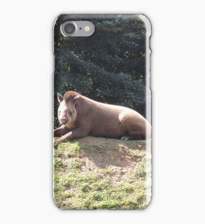 Tapir To The Top and Smile iPhone Case/Skin