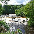 Aysgarth Falls by Graeme  Hyde