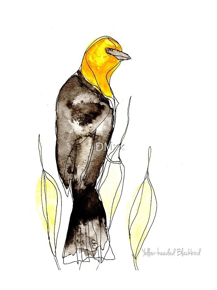 Birds in Ink ~ Yellow Headed Blackbird by DMxx